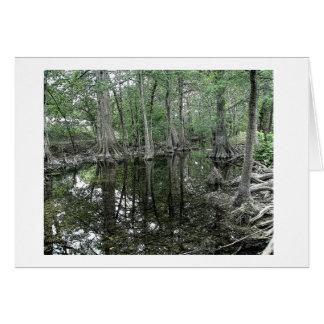 Cibolo Creek Card