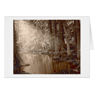 CiboloCreek Greeting Cards