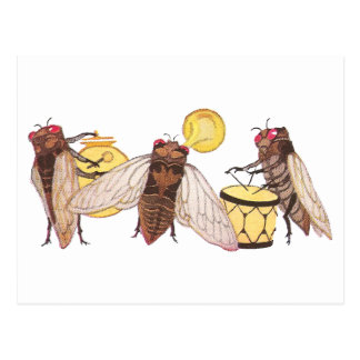Cicada Band with Gong, Trumpet and Drum Postcard