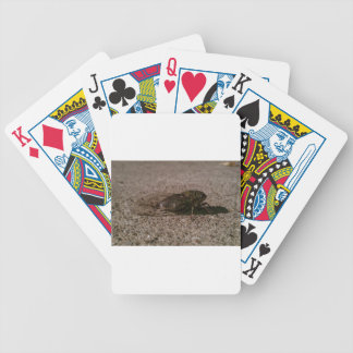 Cicada Bicycle Playing Cards