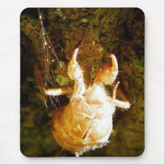 Cicada Claws Mouse Pad