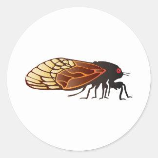 Cicada - Magicicada - Emergence of Amazing Insect Classic Round Sticker