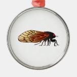 Cicada - Magicicada - Emergence of Amazing Insect Ornaments