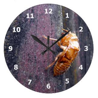 Cicada Nymph Wall Clocks
