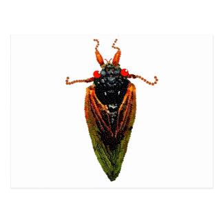 Cicada Postcard