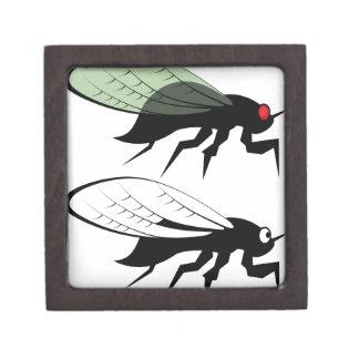 Cicada vector gift box