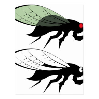 Cicada vector postcard