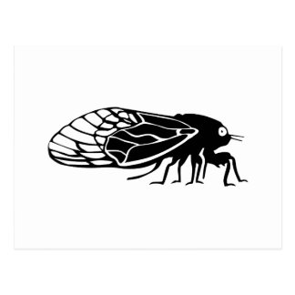 Cicadas - Cigales - Magicicadas - Summer Buzz Postcard