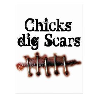 Cicatrices del empuje de los polluelos postales