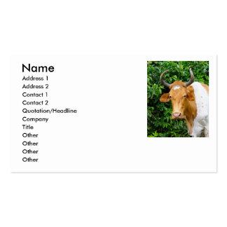 Ciceron, Business Card Templates