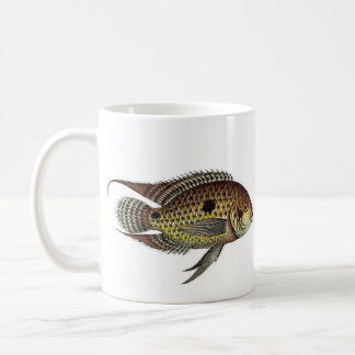 Cichlasoma bimaculatum classic white coffee mug