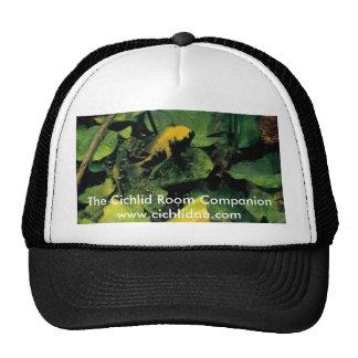 Cichlid Room Companion - Herichthys labridens Trucker Hat
