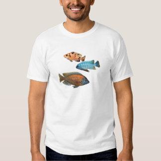 Cichlids africanos camisas
