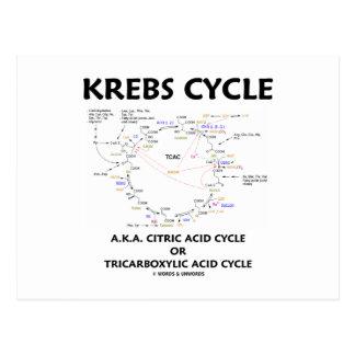 Ciclo de ácido cítrico del ciclo de Krebs A.K.A. Postal
