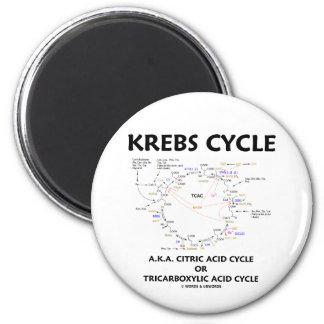 Ciclo de ácido cítrico del ciclo de Krebs A.K.A. t Iman