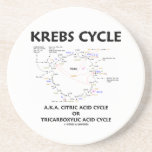 Ciclo de ácido cítrico del ciclo de Krebs A.K.A. t Posavasos Cerveza