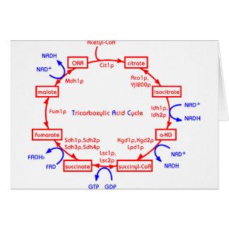 ciclo de ácido tricarboxílico tarjeta de felicitación