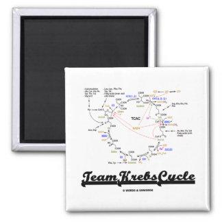 Ciclo de Krebs del equipo (ciclo de ácido cítrico  Imanes