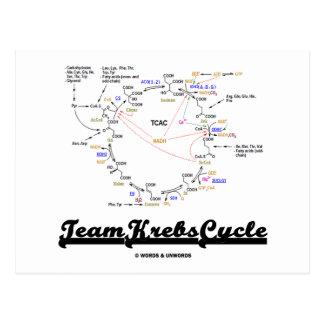 Ciclo de Krebs del equipo (ciclo de ácido cítrico Postal