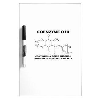 Ciclo de la oxidación-reducción de la coenzima Q10 Pizarras Blancas De Calidad