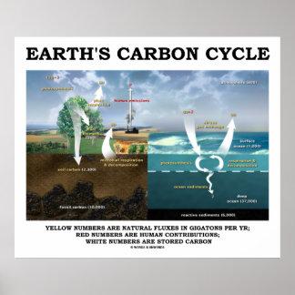 Ciclo del carbono de la tierra geología posters