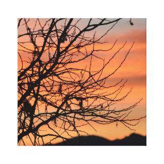 Cielo anaranjado del invierno lienzo envuelto para galerias