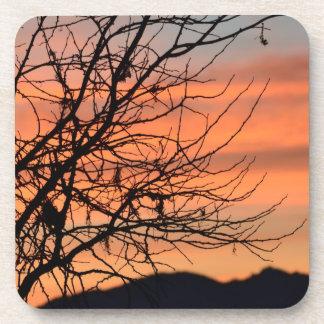 Cielo anaranjado del invierno posavasos de bebidas