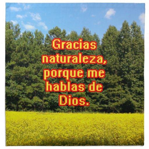 Cielo árboles y flores 18.02.09 napkin