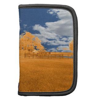 cielo azul anaranjado de la cerca del caballo que  planificadores