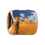 cielo azul anaranjado de la cerca del caballo que  jarrones de caramelos