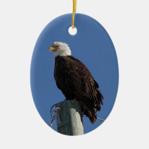 Cielo azul calvo de BEBS Eagle Adorno Ovalado De Cerámica