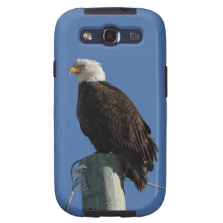 Cielo azul calvo de BEBS Eagle Galaxy S3 Protector