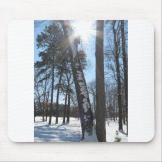 Cielo azul de Carolina en un día soleado de la nie Alfombrilla De Ratón
