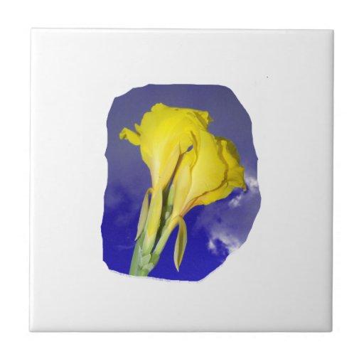 Cielo azul de dos flores amarillas azulejo cuadrado pequeño