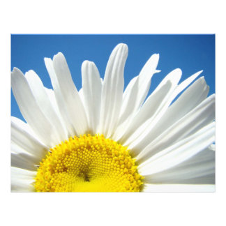 Cielo azul de la flor de papel de la margarita bla membretes personalizados