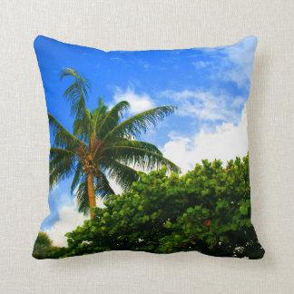 cielo azul de la Florida de las uvas del mar de la Cojín