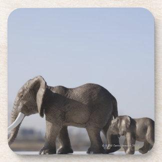 Cielo azul del origen familiar del elefante posavasos