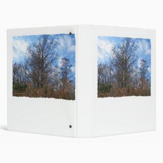 Cielo azul del pantano de la escena del invierno d
