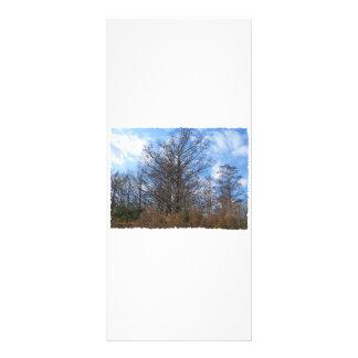 Cielo azul del pantano de la escena del invierno d plantillas de lonas