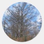 Cielo azul del pantano de la escena del invierno pegatina redonda