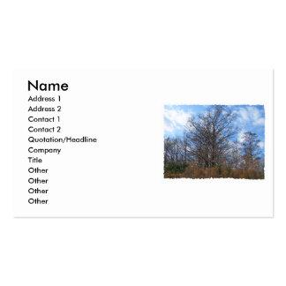 Cielo azul del pantano de la escena del invierno tarjetas de visita