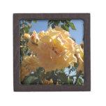 Cielo azul del rosa amarillo cajas de joyas de calidad
