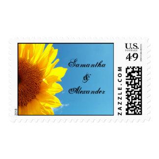 Cielo azul del verano con el girasol amarillo sellos postales