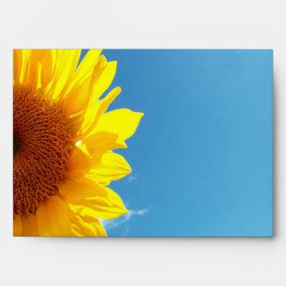 Cielo azul del verano con el girasol amarillo sobres