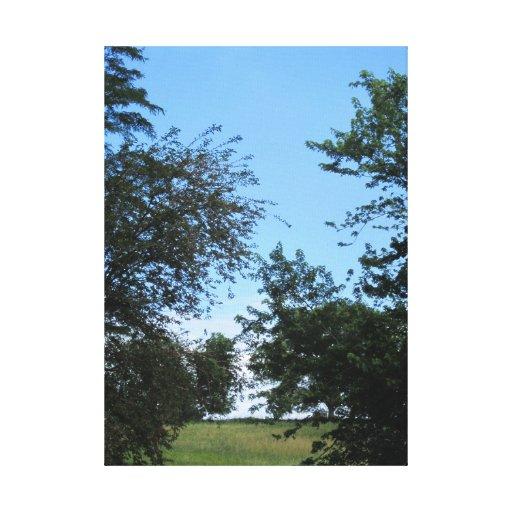 Cielo azul e impresión de la lona de los árboles impresiones en lona