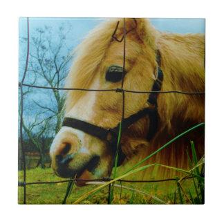 Cielo azul miniatura rubio del potro/del caballo teja  ceramica