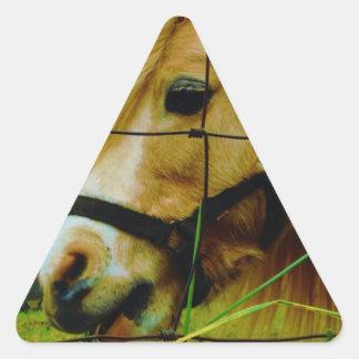 Cielo azul miniatura rubio del potro/del caballo pegatina triangular