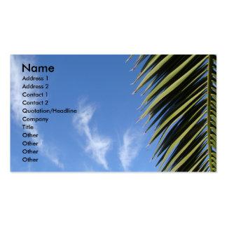 Cielo azul nubes fronda de la palma tarjetas de visita