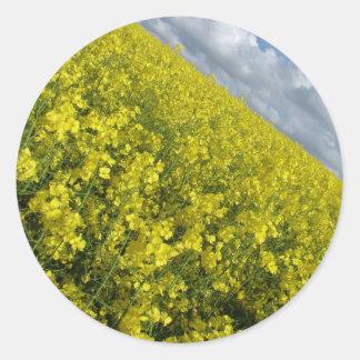 Cielo azul y nublado del agaisnt amarillo de la pegatina redonda