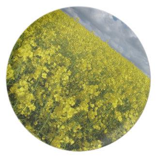 Cielo azul y nublado del agaisnt amarillo de la plato de comida